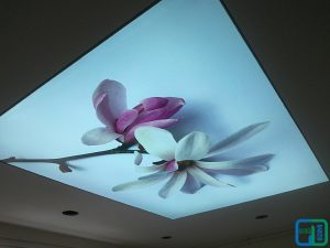 Çiçekli Gergi Tavan Uygulama Modelleri