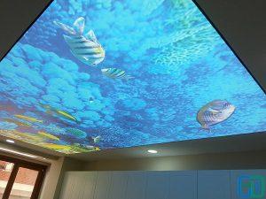 Akvaryum Gergi Tavan Uygulama Denizaltı gergi tavan uygulama