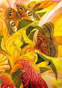 Gergi tavan kelebek resimleri