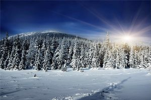 Kış manzaralı gergi tavan görseli