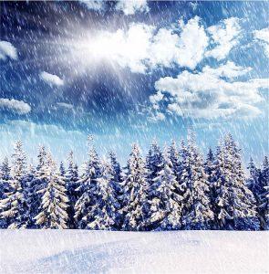 Kış Manzaralı Gergi Tavan Resimleri